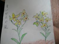 2012_0410_110518-DSCN4804